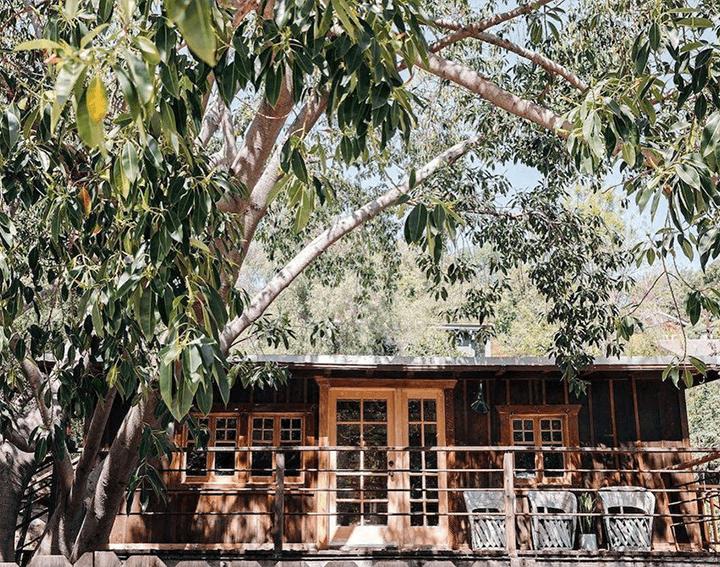 Outside designer Leanne Ford's rustic Echo Park cabin